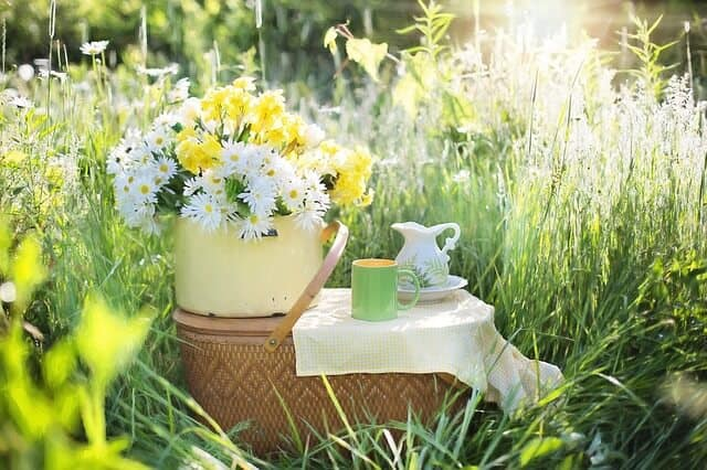 Herbal tea on a picnic basket ,outside in garden of daisies