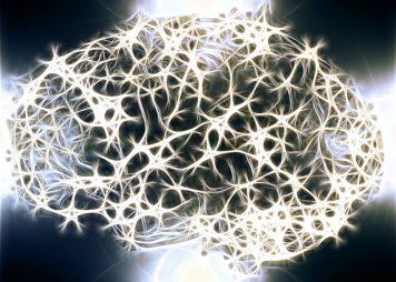 brain-neuron