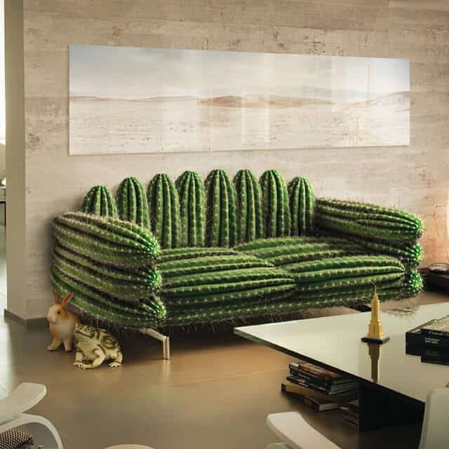 Sofa with cactus thorns which is breaking away from comfort